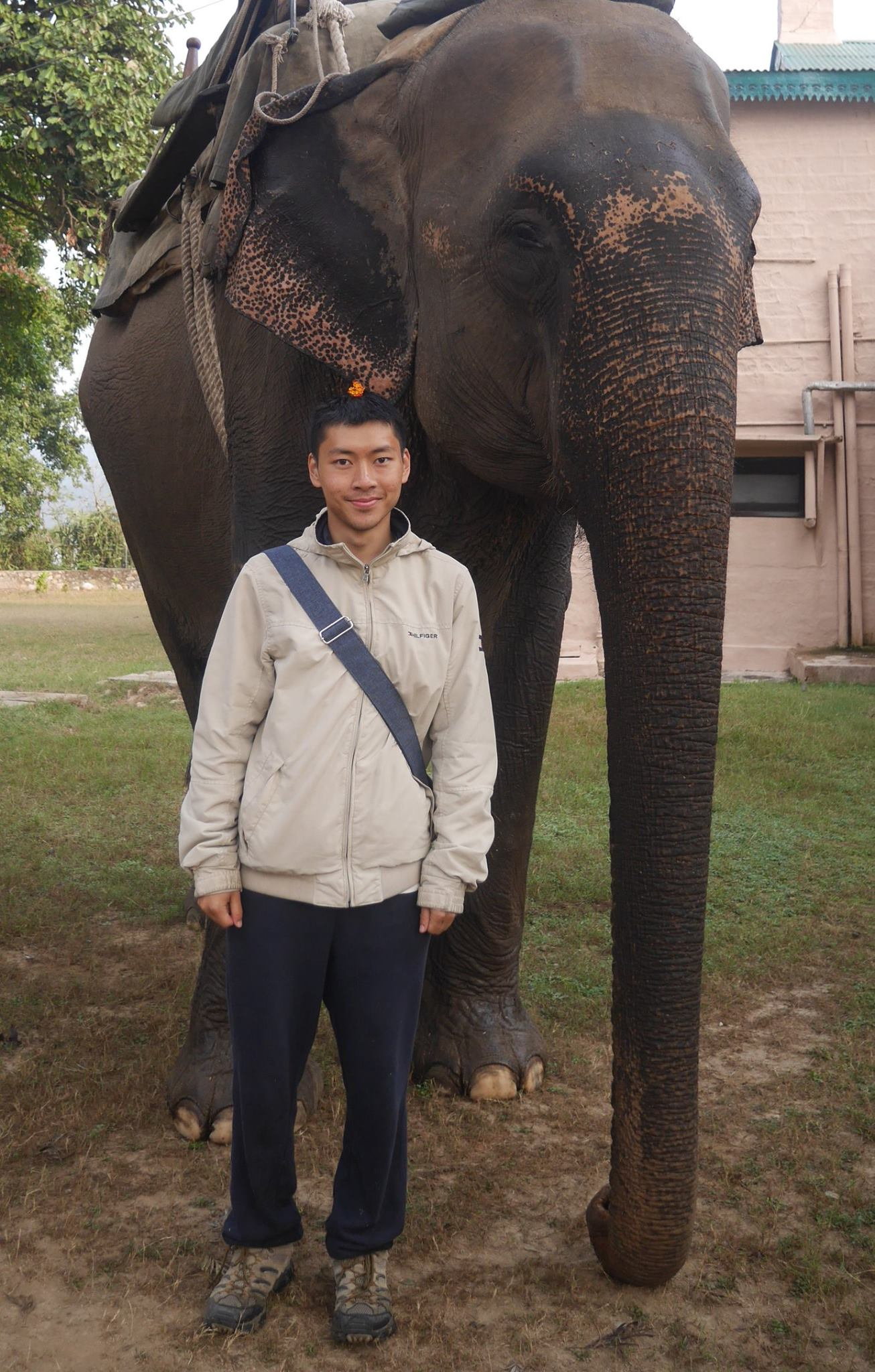 Gary Lau, Scholar